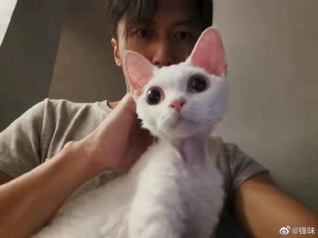 谢霆锋辟谣父子关系不融洽后 首晒与爱猫合影