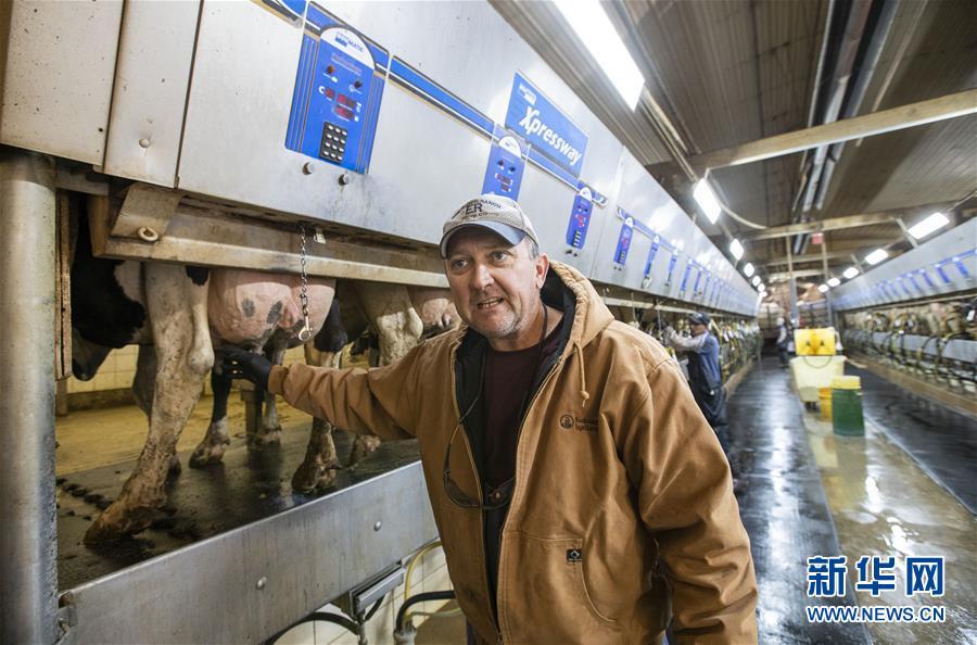 美国奶农:望我们乳制品顺利装船驶向中国