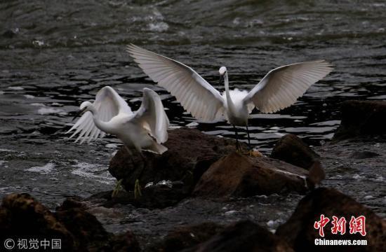 安徽黄山告别源头污染 生态创举实现绿水青山
