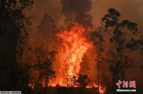 澳大利亚山火持续蔓延 悉尼首次发出最高火灾警告