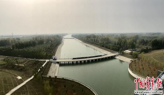 """南水北调东线通水6年:""""水一来,整个生态就变了"""""""