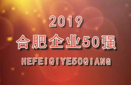 文一集团荣获2019合肥企业50强第5名 合肥服务业企业20强第2名