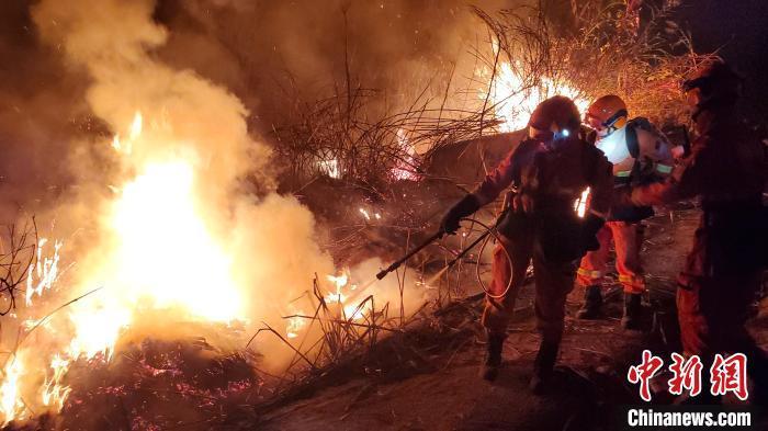 厦门突发森林火灾过火面积约250亩 11小时明火被扑灭