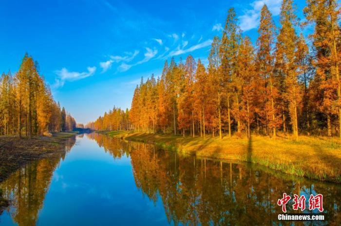 国家林草局局长:坚决遏制林地流失