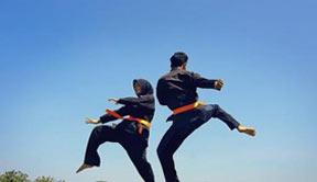 马来西亚武术被列为非物质文化遗产
