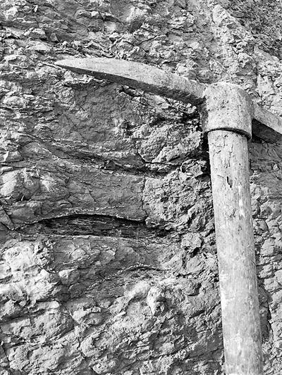 黑龙江首次发现大面积白垩纪恐龙足迹群