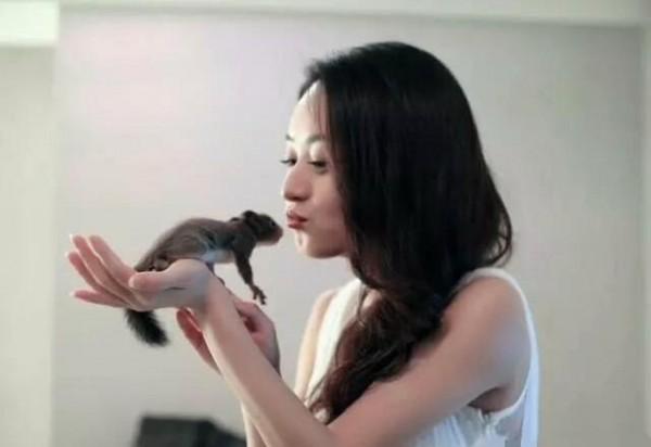 明星新奇宠物:赵丽颖养小松鼠,李冰冰养大蜘蛛