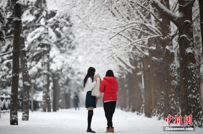 北京迎来新年第一场雪 大部分地区为中雪