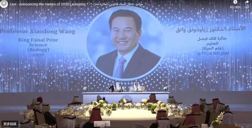 祝贺!华裔科学家王晓东获2020费萨尔国王科学奖