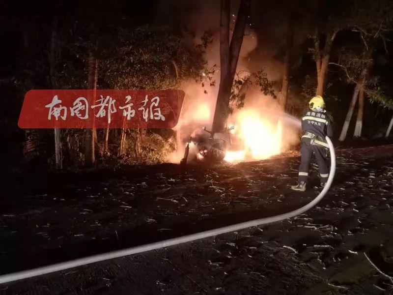 突发!海南万宁一汽车撞树起火,车载3人… 年关将近,行车需小心