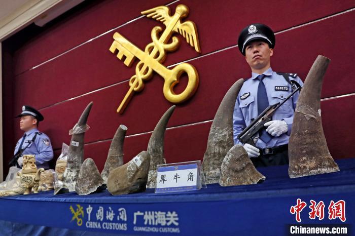 广东省内海关2019年查获象牙及其制品约7.7吨