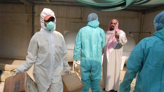 世界动物卫生组织:高致病性H5N8禽流感在沙特爆发