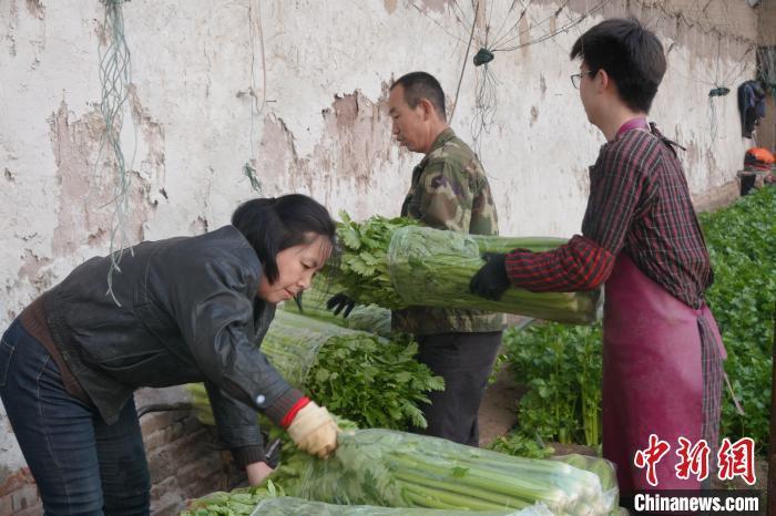 疫情防控不放松 中国北方抢抓农时备耕忙(图)