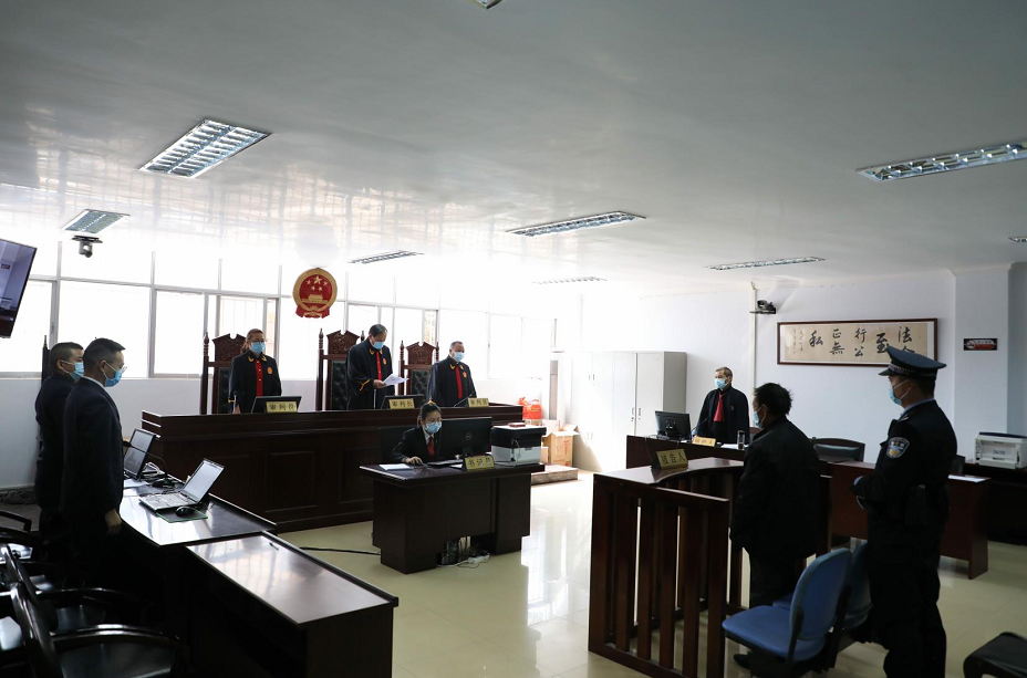 云南宣判两起非法狩猎案:有被告非法捕食白腹锦鸡获刑一年半