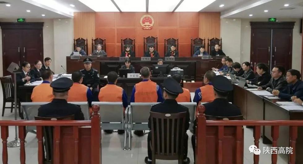 6人获刑!一起涉野生动物制品案一审宣判!