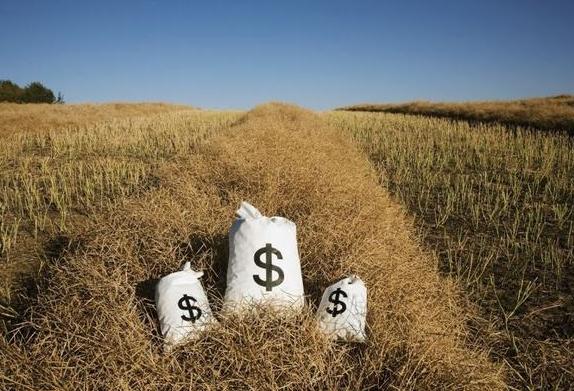 全国人大代表文爱华:建议出台专业性乡村金融法律