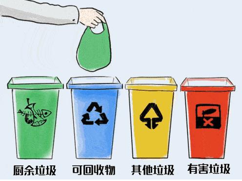 """《家庭版垃圾分类攻略》:一张表分清各种""""易扔错垃圾"""""""