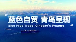 中国(山东)自由贸易试验区青岛片区