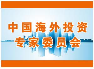 中国海外投资专家委员会