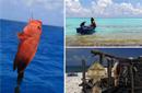 西沙银屿 体验渔民最真实的生活