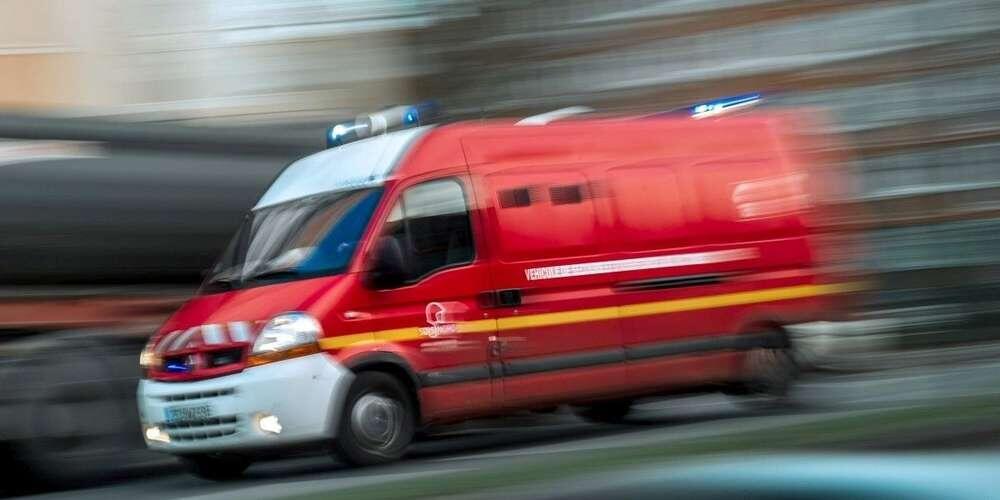 法国2幼童遭恶犬咬伤 警方搜寻恶犬及其主人
