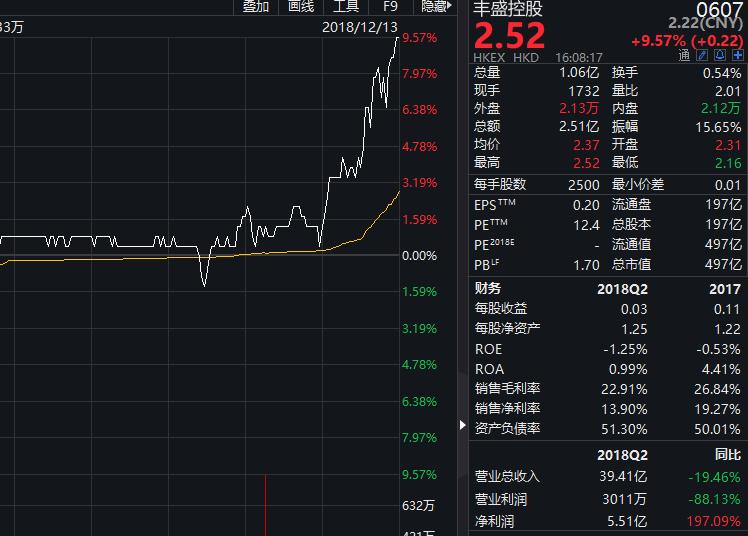 丰盛控股获内资大举加仓 两大商业地产项目明年亮相